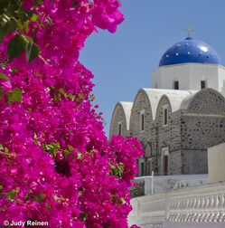Pink Bougainvillea with blue and white Greek Orthodox Church on Santorini Greece